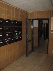 Spojovací dveře z haly dále do domu..